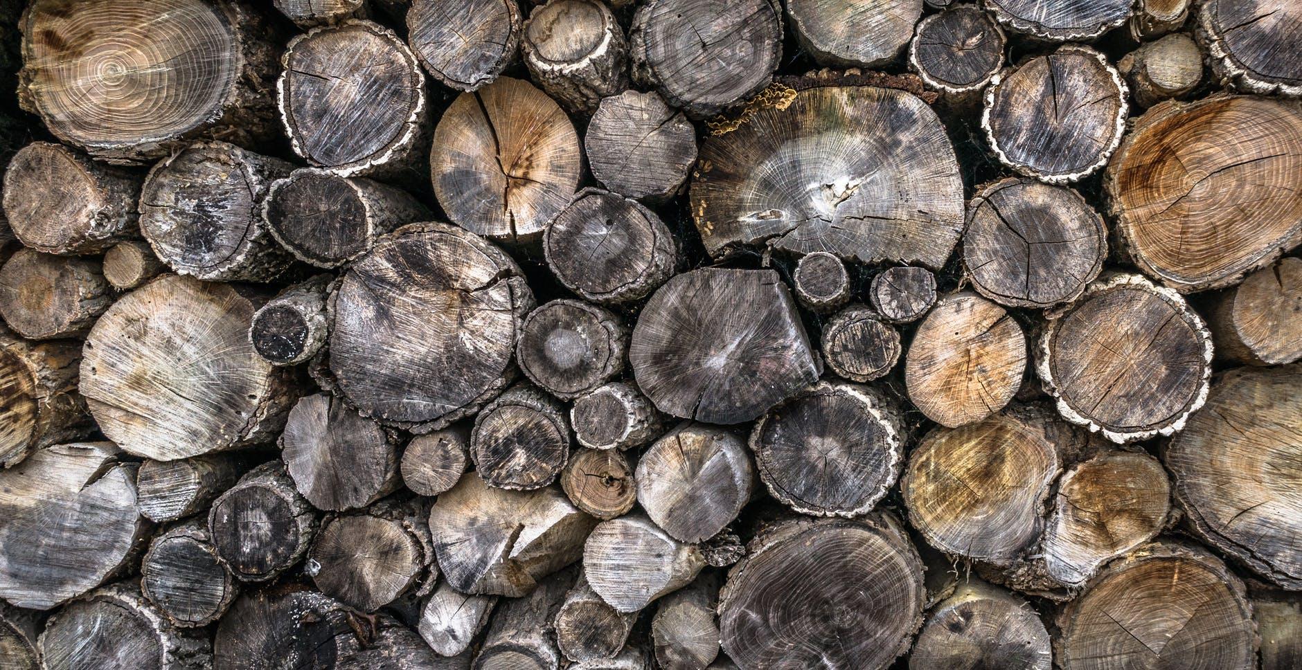 Common timber found in Australia